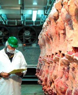 Turkey will allocate Russia a quota for the import of 5 thousand tons of beef with zero duty